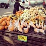 NYC2012_IMG_4703