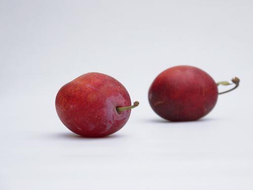 victoria_plums